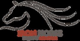 Logo IRON HORSE.png