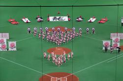 日米野球@SAPPORO DOME