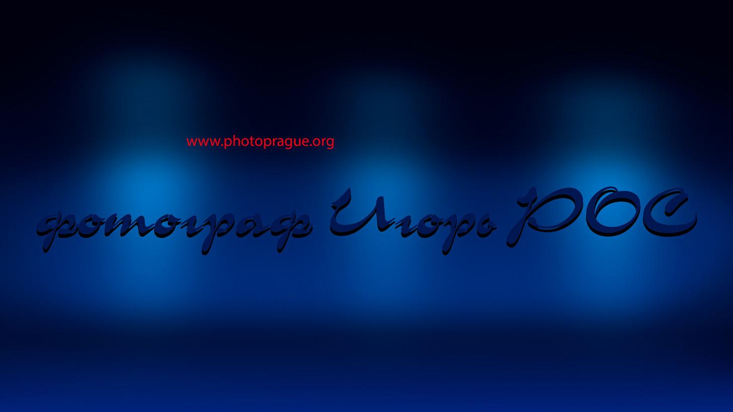 страница сайта, услуги фотографа в Новосибирске