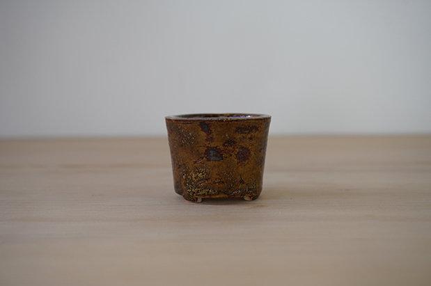 018 玳瑁(タイマイ) 丸