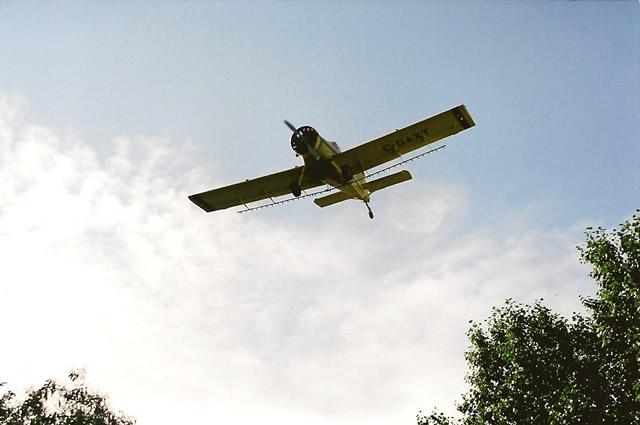 flying002
