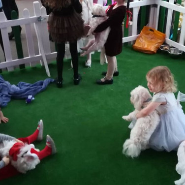 The cutest puppy enclosure at the event