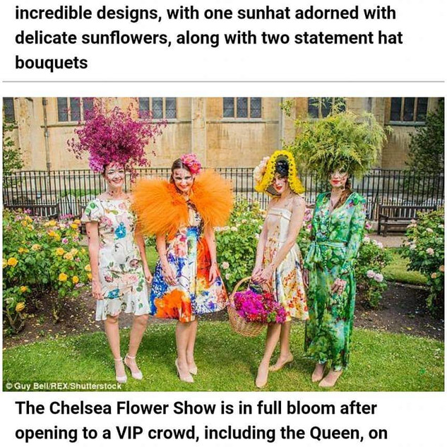 Feature in Daily Mail