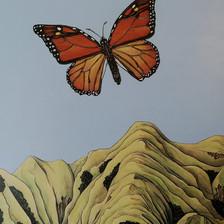 Monarch Rising