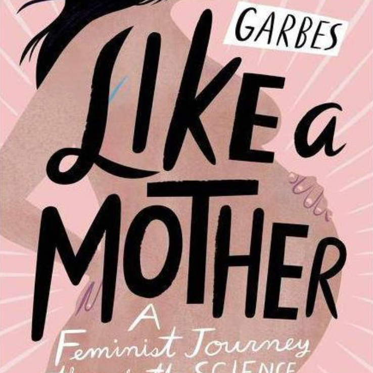 Like A Mother with author Angela Garbes