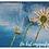 Thumbnail: Kunstdrucke Postkarten Set