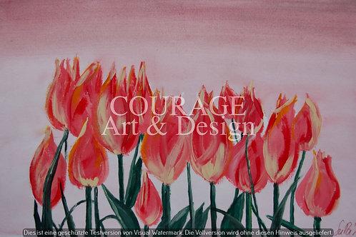 Tulpis pink