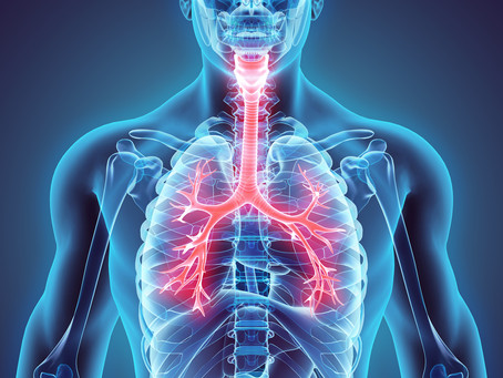 How osteopathy strengthens your respiratory system and boosts your immunity