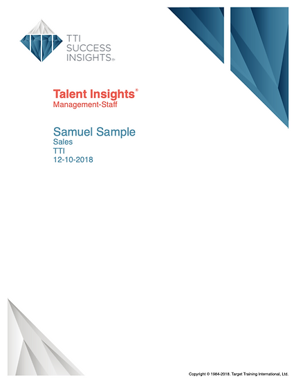 DISC Talent Insights Sample Report