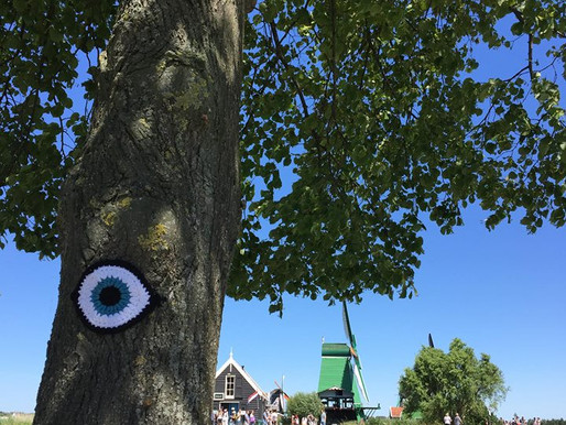 Nature Is Watching: Amsterdam Edition