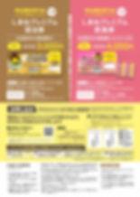 yourshimane_summary_page-0002.jpg