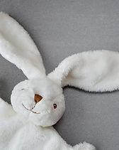 hare-1244405_1280-1024x682.jpg