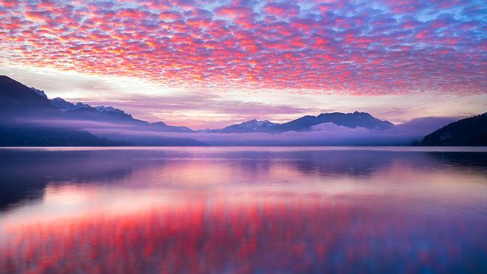 pink-waves-nature-landscape-5k-qf-2560x1
