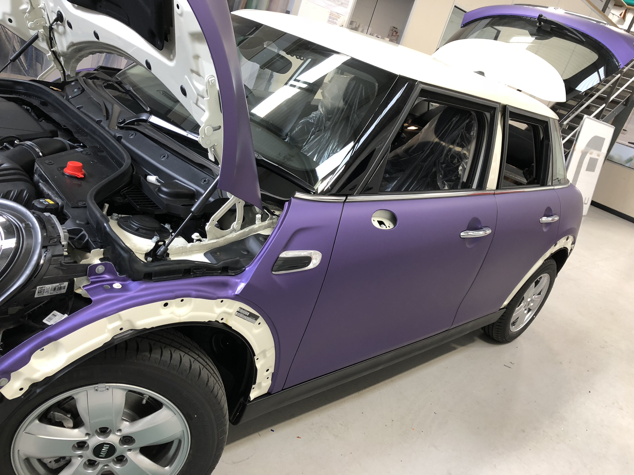 VINES PURPLE MINI 5