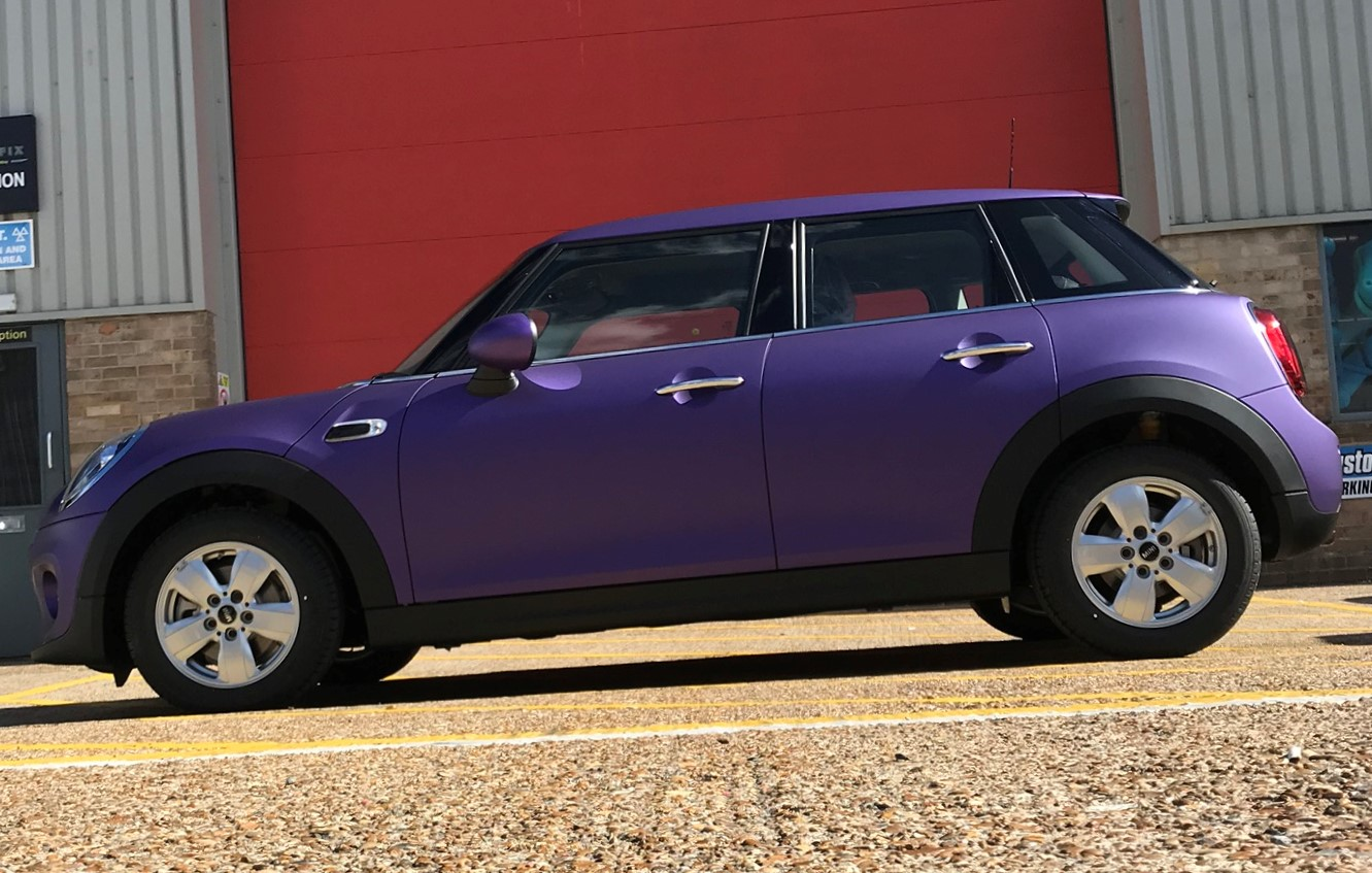 VINES PURPLE MINI 3