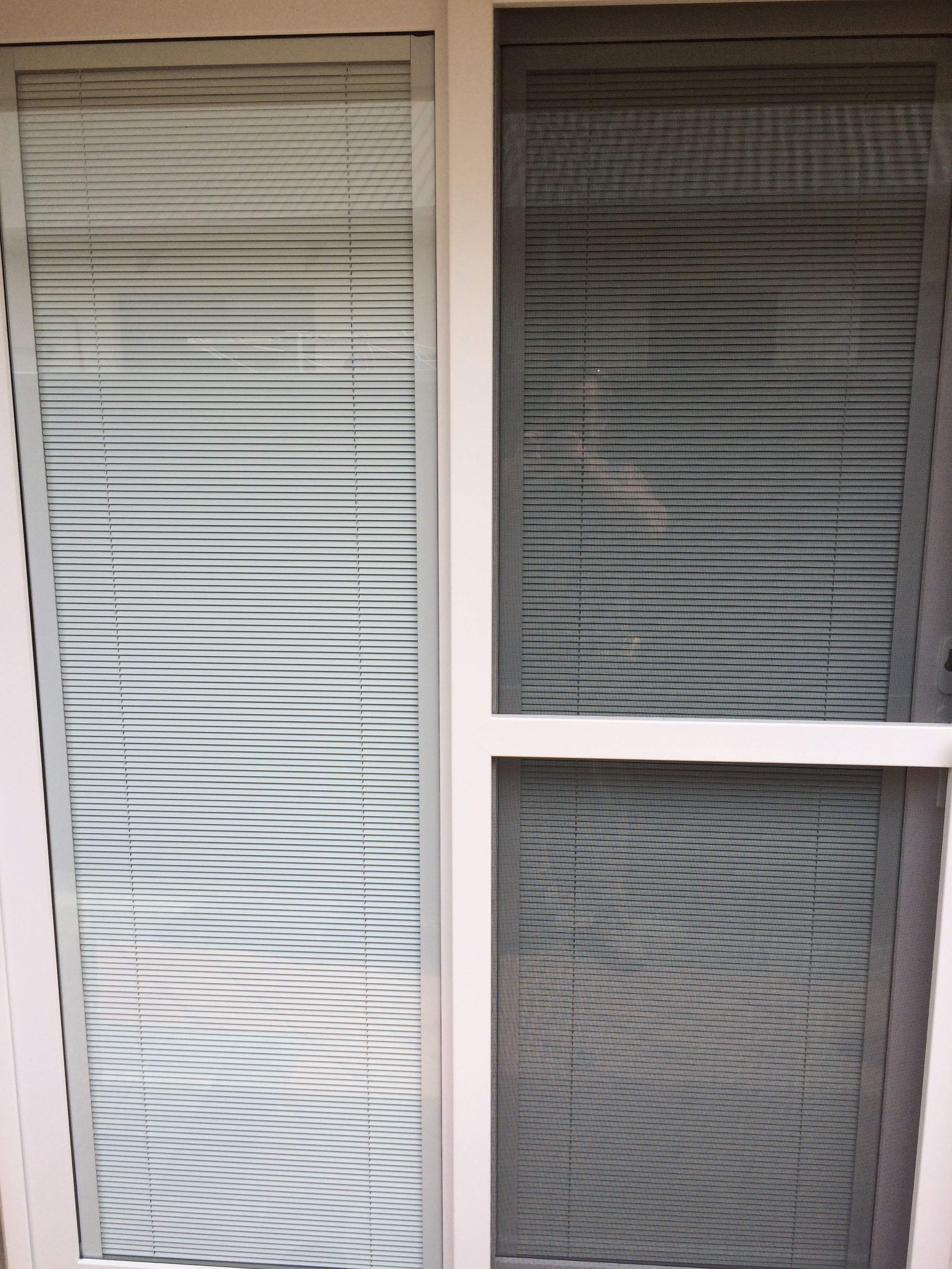 Venetian Blinds in the Glass