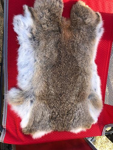 Rabbit Pelt