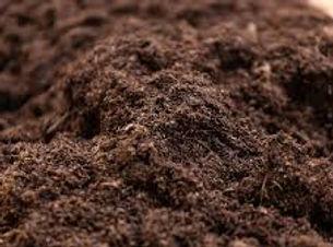 budget top soil.jpg