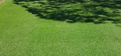 Wintergreen-Couch-1.jpg