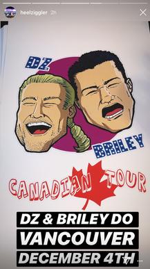 Dolph Ziggler Canadian Tour Poster