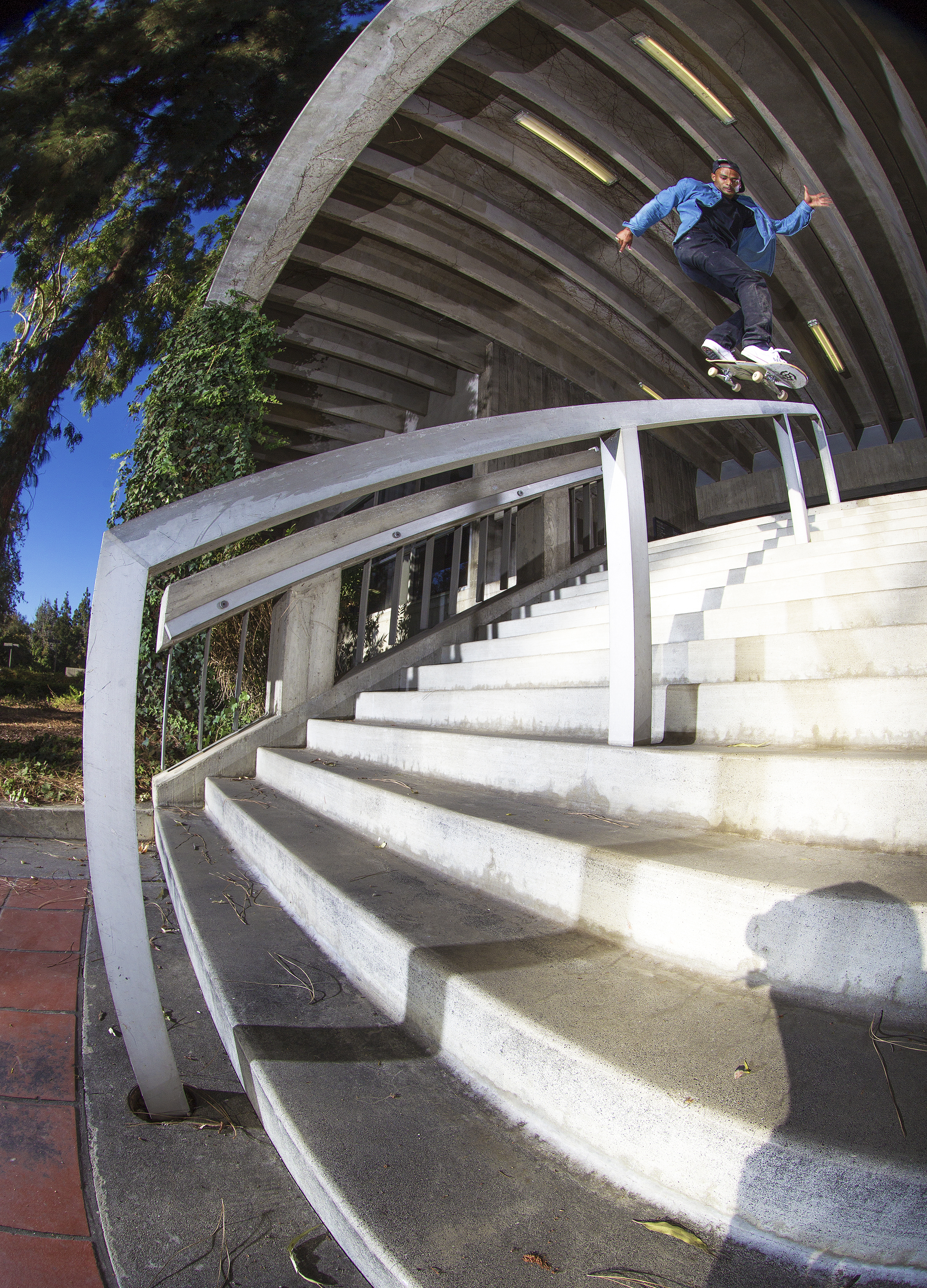 Tommy Fynn - Bs Lip