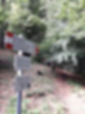 cape 17.jpg