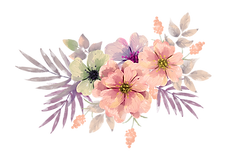 flowersVD.png