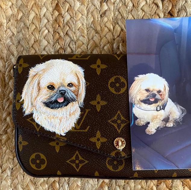 Custom painted pet portrait on Louis Vui