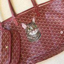 Pet Portrait Goyard Painted cat