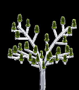 modular-green-white-4.png