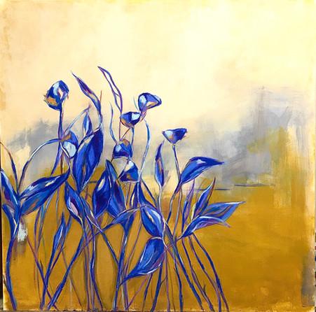 Fields of Blue