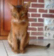 Legolas.jpg