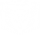 logo all white.png