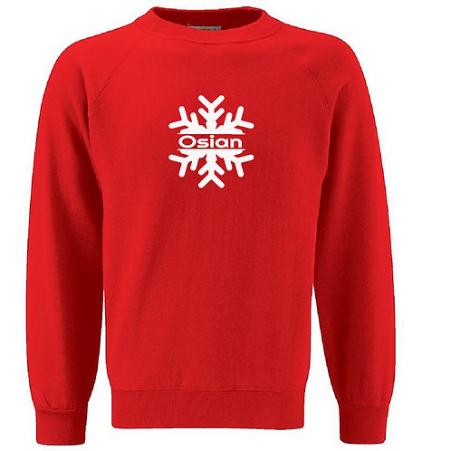 Christmas Snowflake Name Jumper