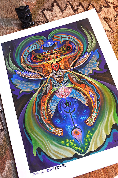 Owl Blossom  paper9x12
