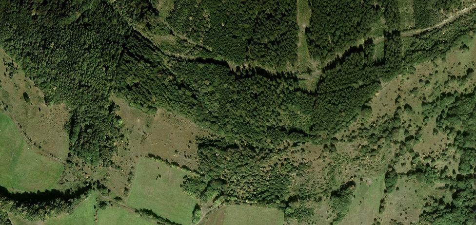 treehouse-jested-mapka-treehouse