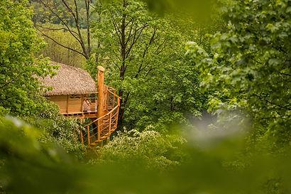 treehouse-jested-amalka-v-lese
