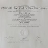 Diplom%20Mgr._edited.jpg