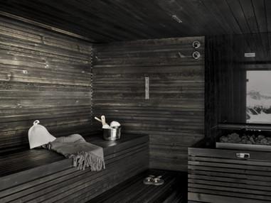 starpool-sauna-tmave-drevo