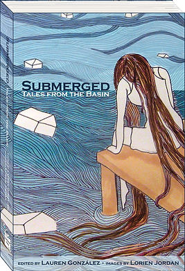 Submerged_Cover3dModel.jpg