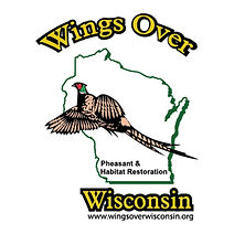 Wings Over Wisconsin.jpg