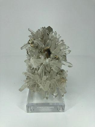 Mineral Specimen: Pyrite on Quartz, Washington