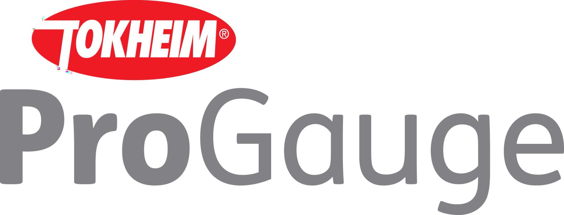tokheim-progauge-megatech