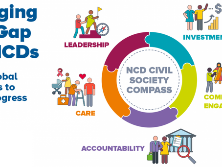 NCD Civil Society Compass - Gap cards