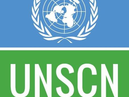 Pesquisa sobre Alimentação e COVID-19 pela UNSCN - até 24/4/2020
