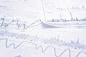 Service 4: Data analysis