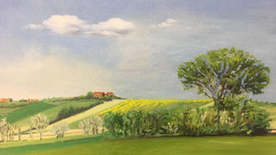 Countryside landscape (Asti, Italy).jpg