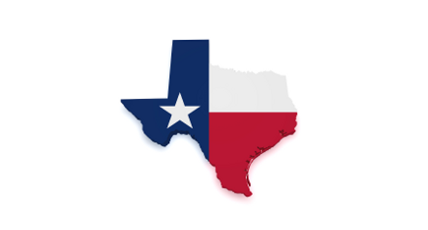 Texas flag 4.PNG