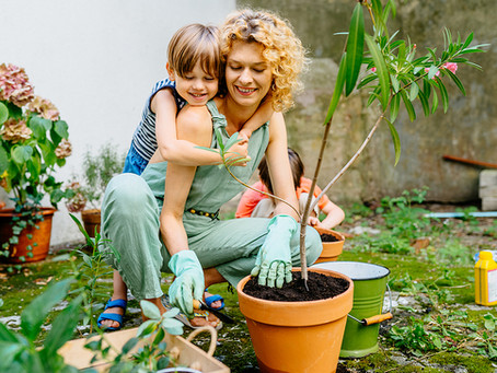 How To Make The Most Of Your Garden All Year Round