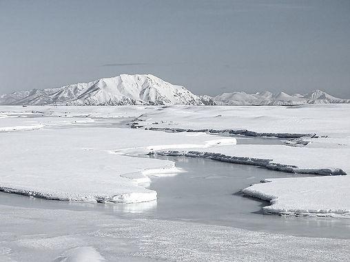 arctique!_edited.jpg